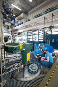 Staff working in the Holland processing plant
