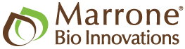 Logo for Marrone